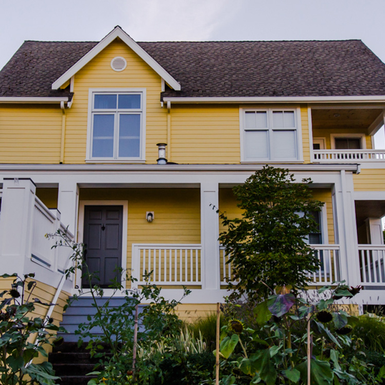 Cheerful Yellow - Painted Exterior House